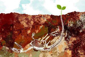 الانقراض لا يقود إلى تطور الأنواع