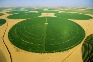 المياه الجوفية غير المتجددة مصدر أساسي لري المزروعات في السعودية